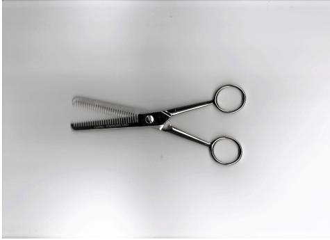 Forbici sfoltitrici per capelli
